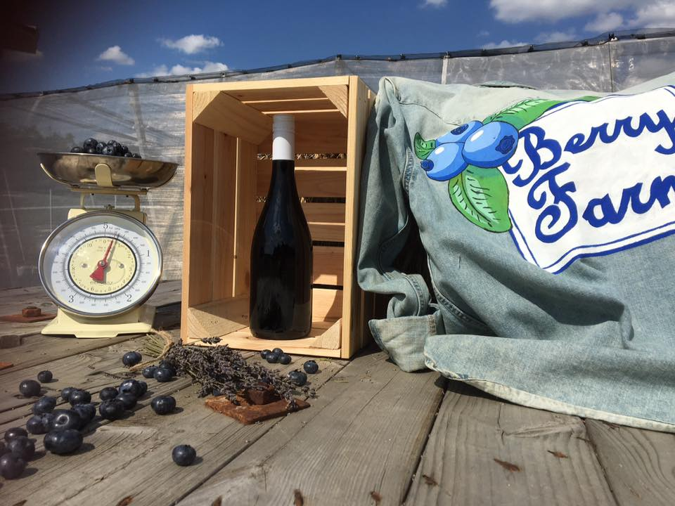 Ochutnávka čučoriedkového vína